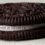 the-in-between1